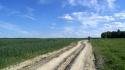 droga-przez-pole