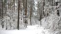 snieg2
